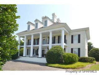 1830 Blue Banks Farm Road, Greenville, NC 27834 (MLS #100018381) :: Century 21 Sweyer & Associates