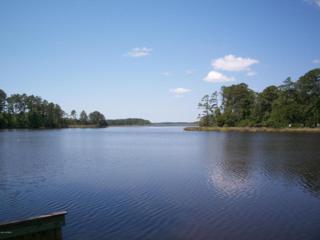 212 Jonaquins Drive, Beaufort, NC 28516 (MLS #100019466) :: Century 21 Sweyer & Associates