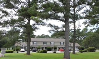 601 Peletier Loop Road L73, Swansboro, NC 28584 (MLS #100019487) :: Century 21 Sweyer & Associates