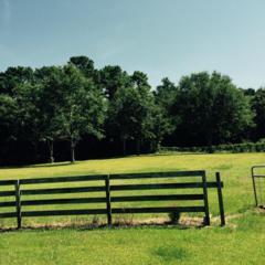 233 Cedar Hollow Court, Sneads Ferry, NC 28460 (MLS #100019874) :: Century 21 Sweyer & Associates