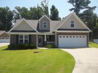 111 Falcon Landing Court, New Bern, NC 28560 (MLS #100021223) :: Century 21 Sweyer & Associates
