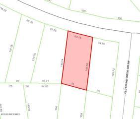 1722 Goose Creek Road SW, Ocean Isle Beach, NC 28469 (MLS #100021553) :: Century 21 Sweyer & Associates