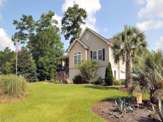 438 Motts Creek Road, Wilmington, NC 28412 (MLS #100022435) :: Century 21 Sweyer & Associates