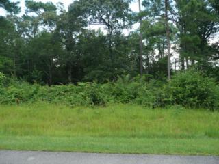 119 King Harbor Drive, Holly Ridge, NC 28445 (MLS #100022762) :: Century 21 Sweyer & Associates
