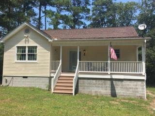1161 Shelter Creek Drive, Burgaw, NC 28425 (MLS #100023042) :: Century 21 Sweyer & Associates