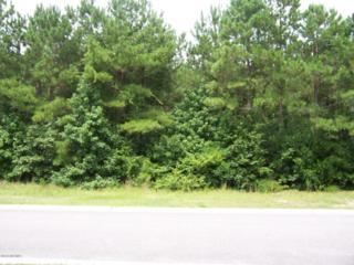 75 Summerset Landing, Hampstead, NC 28443 (MLS #100024944) :: Century 21 Sweyer & Associates