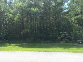 119 Garbacon Drive, Beaufort, NC 28516 (MLS #100025029) :: Century 21 Sweyer & Associates