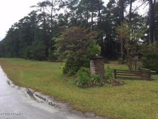 101 Queen Annes Lane, Beaufort, NC 28516 (MLS #100025923) :: Century 21 Sweyer & Associates