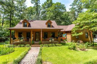 96 Tall Oaks Drive, Castle Hayne, NC 28429 (MLS #100026121) :: Century 21 Sweyer & Associates