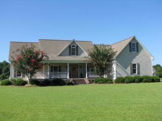 1220 Cedar Point Drive, Williamston, NC 27892 (MLS #100026450) :: Century 21 Sweyer & Associates