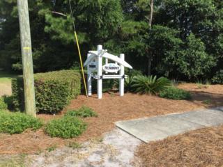1307 Croaker Lane, Carolina Beach, NC 28428 (MLS #100026500) :: Century 21 Sweyer & Associates