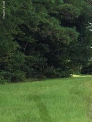 103 Club House Drive, Cape Carteret, NC 28584 (MLS #100026504) :: Century 21 Sweyer & Associates