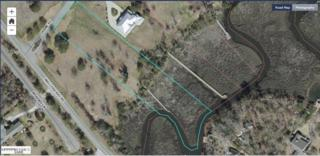 25 Crane Pointe, Hampstead, NC 28443 (MLS #100026766) :: Century 21 Sweyer & Associates