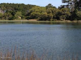 310 Quiet Cove, Gloucester, NC 28528 (MLS #100026793) :: Century 21 Sweyer & Associates