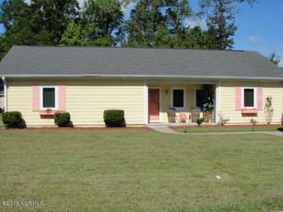 1302 Brentwood Drive, Kinston, NC 28501 (MLS #100027315) :: Century 21 Sweyer & Associates