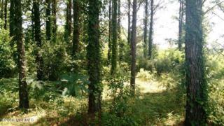 92 Smith Creek Road, Oriental, NC 28571 (MLS #100027674) :: Century 21 Sweyer & Associates