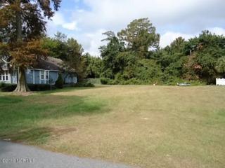 54 Turtle Cove Drive, Elizabethtown, NC 28337 (MLS #100027876) :: Century 21 Sweyer & Associates