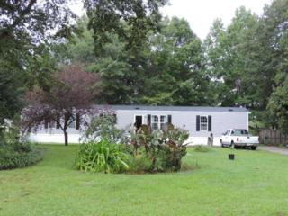 106 Marlin Court, Rocky Point, NC 28457 (MLS #100027923) :: Century 21 Sweyer & Associates