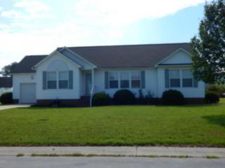 102 Ore Drive, Washington, NC 27889 (MLS #100028869) :: Century 21 Sweyer & Associates