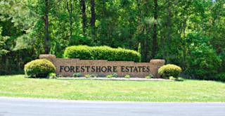 76 Forest Drive, Oriental, NC 28571 (MLS #100029184) :: Century 21 Sweyer & Associates