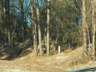 1651 Blacksmith Circle, Kinston, NC 28504 (MLS #100029229) :: Century 21 Sweyer & Associates