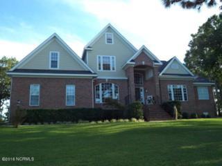 216 Wetland Drive, Wilmington, NC 28412 (MLS #100029489) :: Century 21 Sweyer & Associates