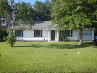 607 Hayden Court, Havelock, NC 28532 (MLS #100029954) :: Century 21 Sweyer & Associates