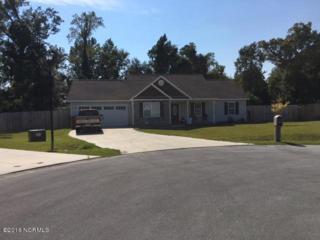 405 Halo Court, Jacksonville, NC 28546 (MLS #100029991) :: Century 21 Sweyer & Associates