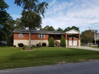 298 Bayshore Drive, Chocowinity, NC 27817 (MLS #100030130) :: Century 21 Sweyer & Associates