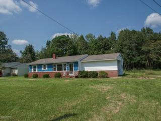 131 Longleaf Drive, Wilmington, NC 28401 (MLS #100031045) :: Century 21 Sweyer & Associates