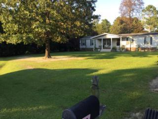 314 N Red Maple Court N, Swansboro, NC 28584 (MLS #100031080) :: Century 21 Sweyer & Associates