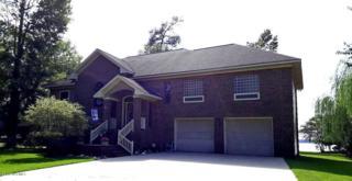 121 Riverview Drive, Washington, NC 27889 (MLS #100031432) :: Century 21 Sweyer & Associates