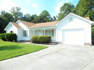 819 Mandarin Trail, Jacksonville, NC 28540 (MLS #100031518) :: Century 21 Sweyer & Associates