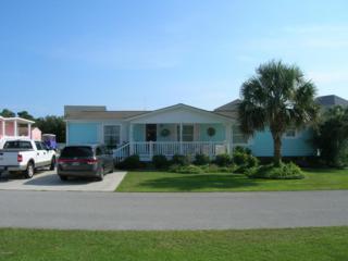 215 Blue Goose Lane, Newport, NC 28570 (MLS #100031690) :: Century 21 Sweyer & Associates