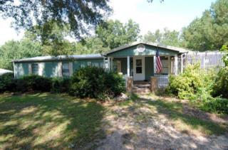 130 Sandy Creek Drive, Leland, NC 28451 (MLS #100031991) :: Century 21 Sweyer & Associates