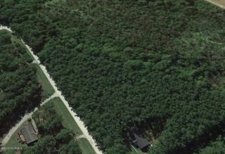 Lot 93 Pond Road, Rocky Point, NC 28457 (MLS #100032038) :: Century 21 Sweyer & Associates