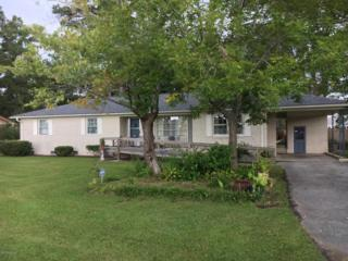 4509 Blue Clay Road, Castle Hayne, NC 28429 (MLS #100032188) :: Century 21 Sweyer & Associates