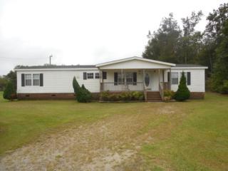 155 Farm Lane, Washington, NC 27889 (MLS #100032233) :: Century 21 Sweyer & Associates