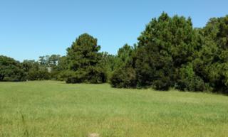 111 Middens Creek Drive, Smyrna, NC 28579 (MLS #100032286) :: Century 21 Sweyer & Associates