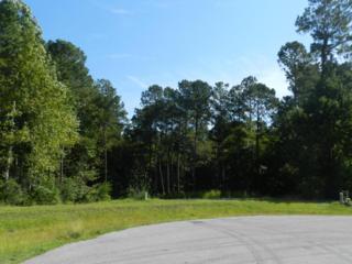125 River Reach Drive W, Swansboro, NC 28584 (MLS #100032552) :: Century 21 Sweyer & Associates