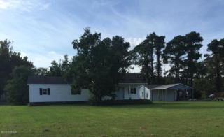102 Painted Daisy Lane, Gloucester, NC 28528 (MLS #100032581) :: Century 21 Sweyer & Associates