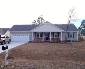 102 Rosemary Avenue, Hubert, NC 28539 (MLS #100034313) :: Century 21 Sweyer & Associates