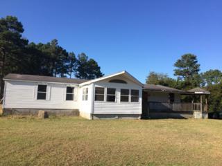 301 Hatcher Drive, Newport, NC 28570 (MLS #100034442) :: Century 21 Sweyer & Associates