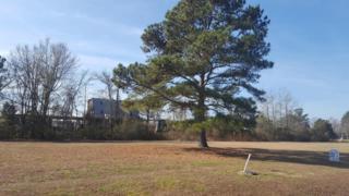34 Whichard Lane, Chocowinity, NC 27817 (MLS #100034720) :: Century 21 Sweyer & Associates
