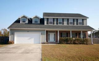 300 Cabin Circle, Jacksonville, NC 28540 (MLS #100035705) :: Century 21 Sweyer & Associates