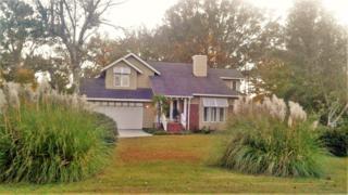 4154 Appleton Way, Wilmington, NC 28412 (MLS #100036102) :: Century 21 Sweyer & Associates