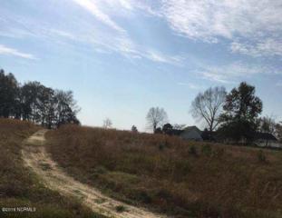2626 Berry Hill Court, Grimesland, NC 27837 (MLS #100036120) :: Century 21 Sweyer & Associates