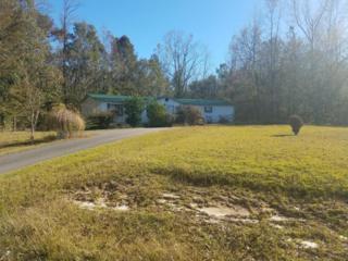 128 Old Beechtree Lane, Jacksonville, NC 28540 (MLS #100036276) :: Century 21 Sweyer & Associates