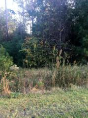 268 White Oak Bluff Road, Stella, NC 28582 (MLS #100036385) :: Century 21 Sweyer & Associates