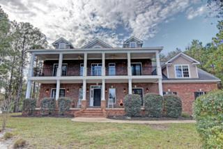 202 Ashworth Manor Court, Wilmington, NC 28412 (MLS #100036460) :: Century 21 Sweyer & Associates